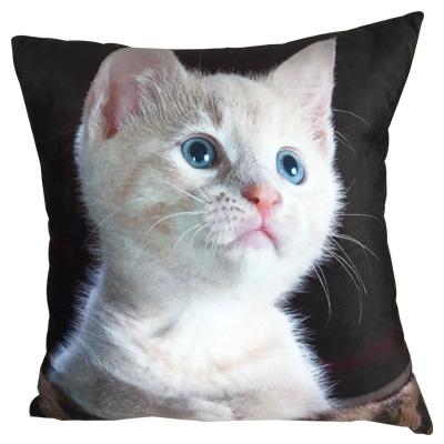 sublimaton pillow