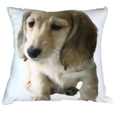 sublimation pillow