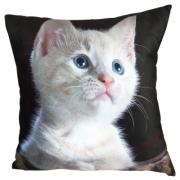 sublimaton pillow <img src=templates/utf-8/no1/images/new.gif border=0>